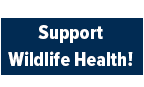 Make a Gift to the Karen C. Drayer Wildlife Health Center